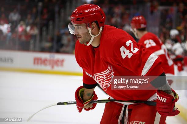Martin Frk of the Detroit Red Wings looks on while playing the New Jersey Devils at Little Caesars Arena on November 01 2018 in Detroit Michigan...
