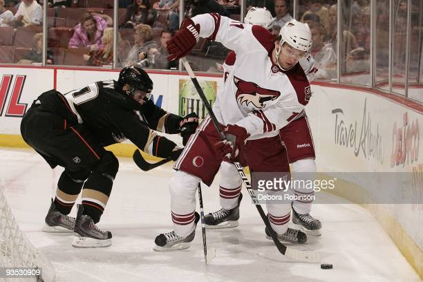 Martin Hanzal of the Phoenix Coyotes controls the puck behind the net against Corey Perry of the Anaheim Ducks during the game on November 29, 2009...