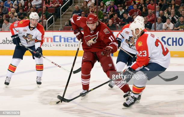 Martin Hanzal of the Phoenix Coyotes skates with the puck between Garrett Wilson and Scott Gomez of the Florida Panthers during the second period at...
