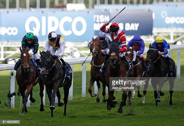 Martin Harley celebrates riding Sheikhzayedroad to win The Qipco British Champions Lond Distance Cup at Ascot Racecourse on October 15 2016 in Ascot...