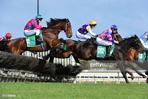 Martin Kelly riding Zataglio 10 jumps ahead of Darryl Horner riding Een Leven before winning Race 3 the TAB Maiden Hurdle during Brierly Day at...