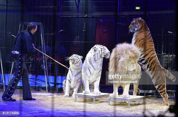 Martin Lacey Jr during Circus Krone celebrates premiere of 'Hommage' at Circus Krone on February 1 2018 in Munich Germany