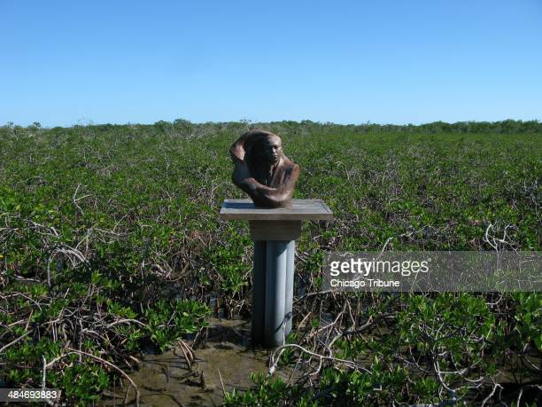 Martin Luther King visited the mangrove swamps to write in a quiet place leading to a recentlybuilt memorial in the swamps