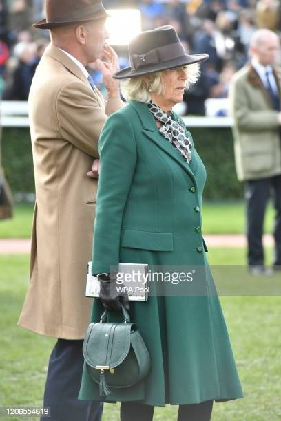Martin St Quinton, Chairman of the Cheltenham Racecourse Committee with Camilla, Duchess of Cornwall as she attends the Ladies Day during Cheltenham...