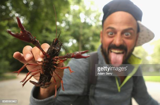 Martin Testoni from Uruguay poses with a Louisiana crawfish or Procambarus clarkii in the Tiergarten park on August 24 2017 in Berlin Germany Popular...