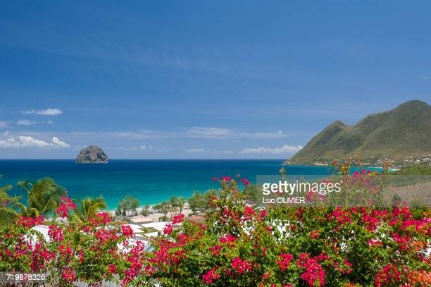 martinique, diamond rock in the south of the island - martinique stock photos and pictures