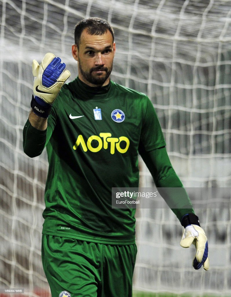 Asteras Tripolis FC v PAOK FC - Greek Super League : News Photo