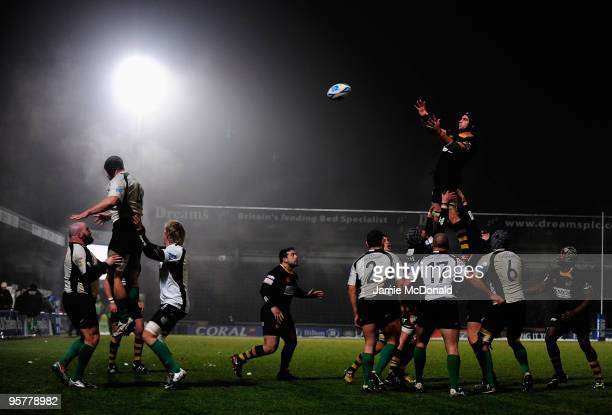 Marty Veale of London Wasps takes the ball in the line-out during the Amlim Challenge Cup, Round Five match between London Wasps and Roma at Adams...