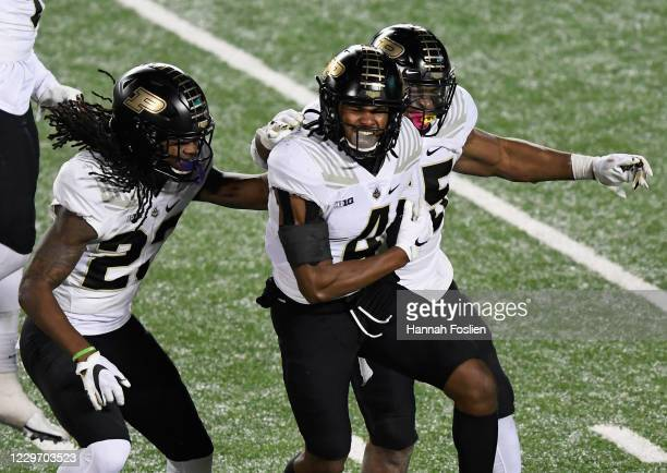 Marvin Grant of the Purdue Boilermakers celebrates sacking quarterback Seth Green of the Minnesota Golden Gophers on fourth down with teammates King...