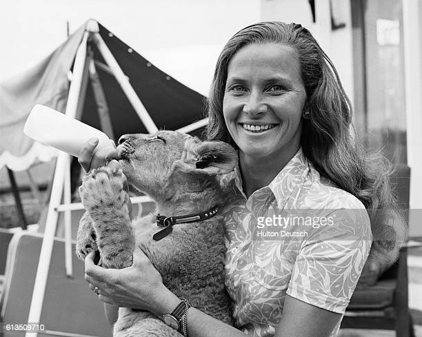 Mary Chipperfield feeds milk to a lion cub named Marquess the Second which is being reared by hand at the Chipperfield's home on the Longleat House...