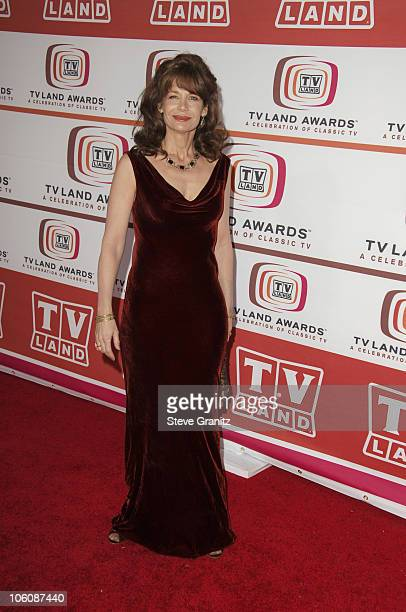 Mary Crosby during 4th Annual TV Land Awards Arrivals at Barker Hangar in Santa Monica California United States
