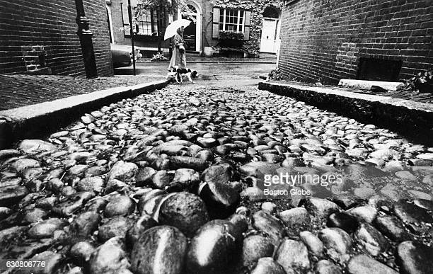 Mary Dougherty carries an umbrella to protect herself from the rain as she walks with her dog Shags along West Cedar Street past the cobble stones of...
