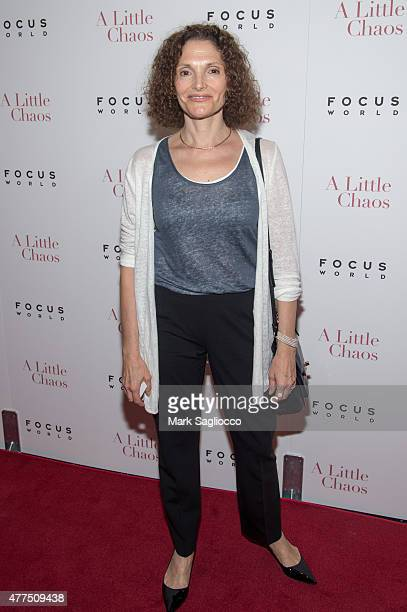 Mary Elizabeth Mastrantonio attends A Little Chaos New York Premiere at the Museum of Modern Art on June 17 2015 in New York City