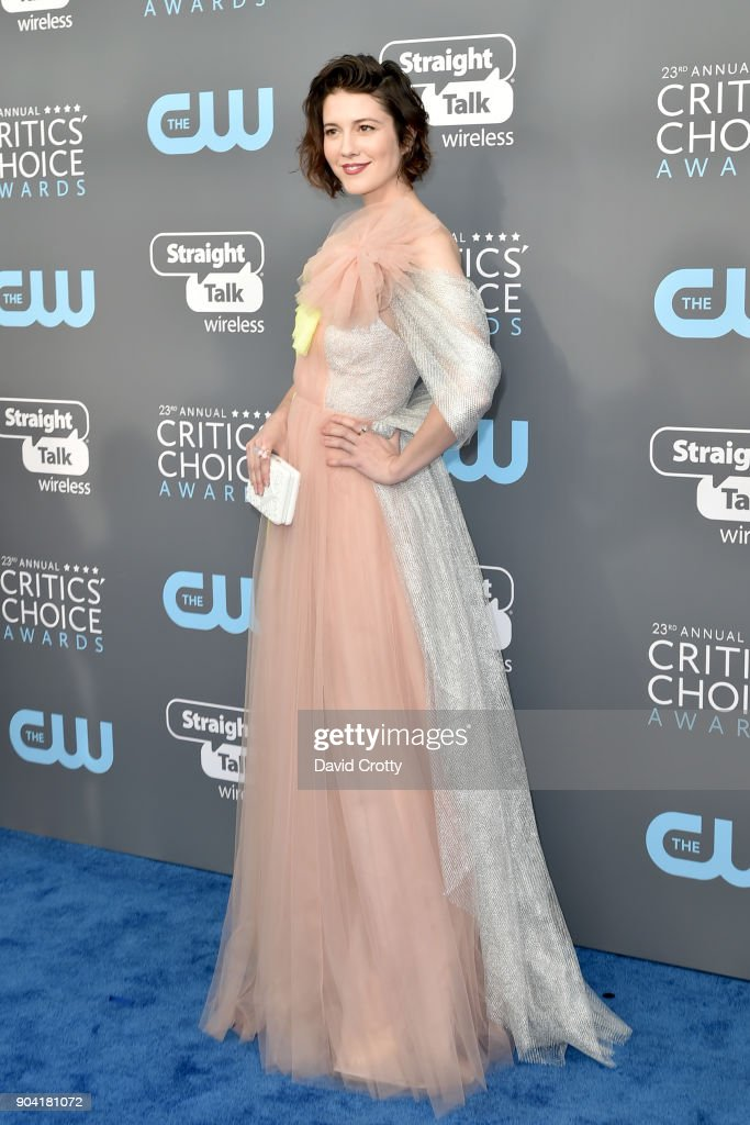 Mary Elizabeth Winstead attends The 23rd Annual Critics' Choice Awards - Arrivals at The Barker Hanger on January 11, 2018 in Santa Monica, California.