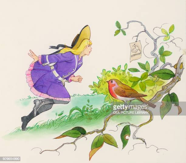 The Secret Garden Stock Photos and Pictures | Getty Images