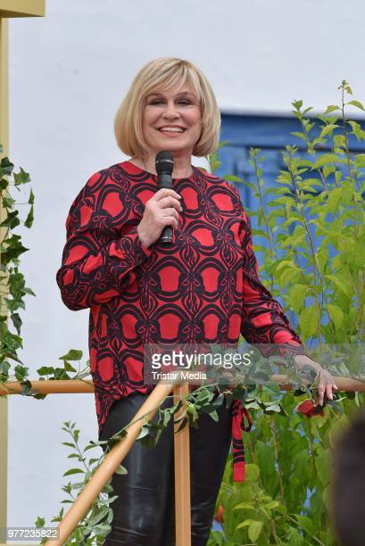 Mary Roos during the ARD live tv show 'Immer wieder sonntags' at EuropaPark on June 17 2018 in Rust Germany