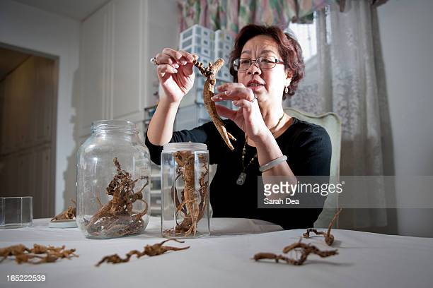 DECEMBER 11 2010 Mary Wong examines her jar of wild ginseng root some pieces dating as far back as 150 years old Wong runs a business called Mary...