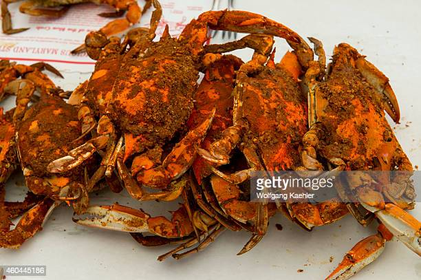 Maryland Blue Crabs at the Crab Claw Restaurant at the Inner Harbor of St Michaels a historic town in Maryland USA situated on Chesapeake Bay