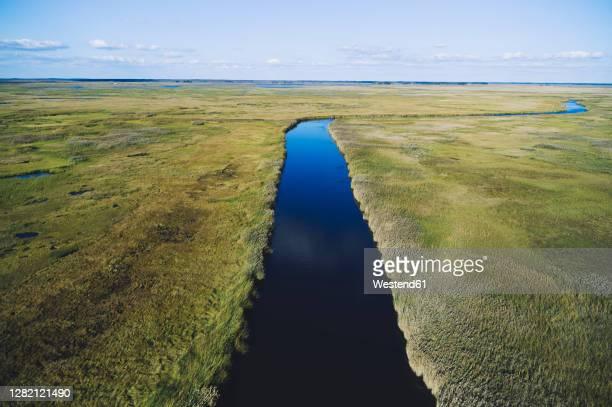 usa, maryland, drone view of marsh along nanticoke river on eastern shore - チェサピークベイ ストックフォトと画像