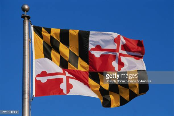 maryland state flag - maryland us state stock pictures, royalty-free photos & images