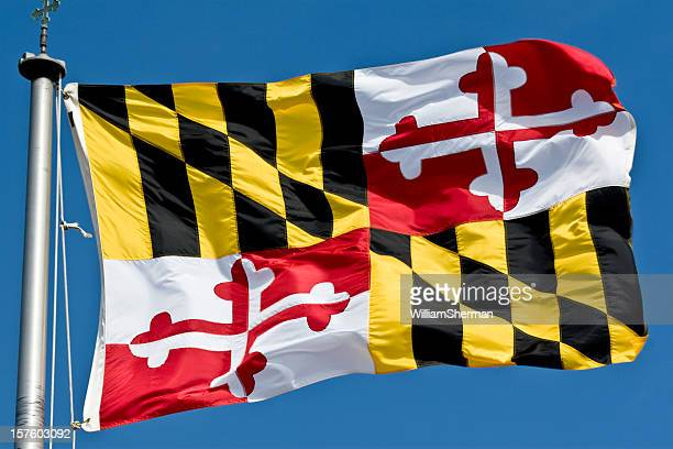 Maryland State Flag Waving In the Breeze