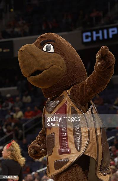 Maryland Terrapins mascot Testudo during the game against the Notre Dame Fighting Irish during the BBT Classic on December 3 2006 at Verizon Center...