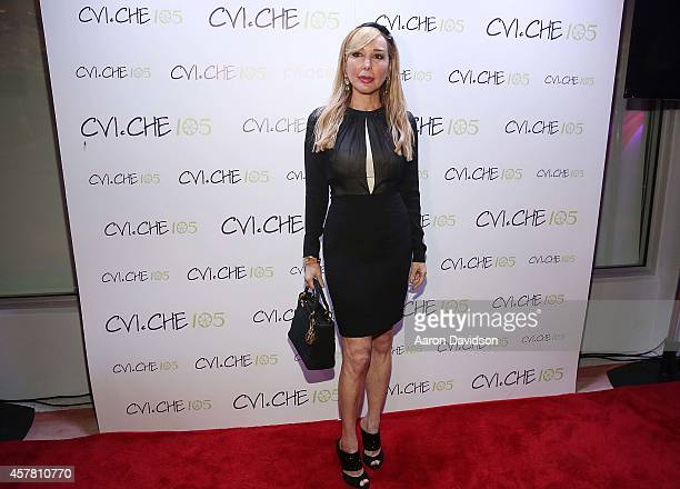 Marysol Patton attends the Private Opening Reception For CVICHE 105 South Beach on October 24 2014 in Miami Florida