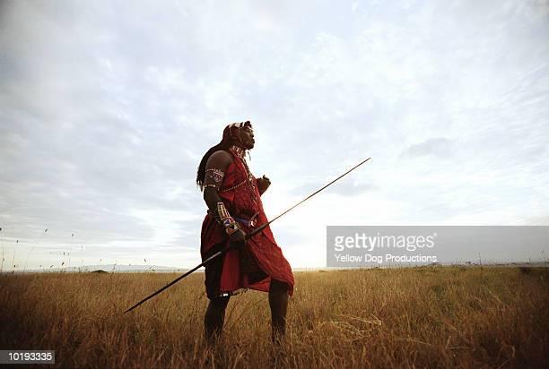 masai warrior walking in field, kenya - guerrier massai photos et images de collection