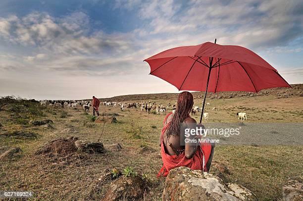 Masai Warrior Watching a Herd of Goats - Kenya, Africa.