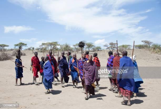 masai warriors dancing - fotofojanini foto e immagini stock