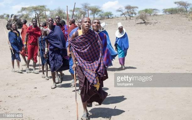 masai warriors dancing tanzania - fotofojanini foto e immagini stock
