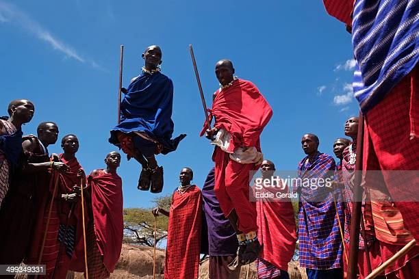 CONTENT] Masai warriors jumping during traditional dance in the Ngorongoro Conservation Area in the Crater Highlands area of Tanzania Eastern Africa