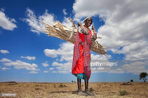 masai woman carrying firewood - hugh sitton stock-fotos und bilder