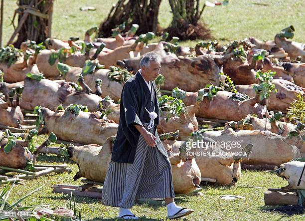 Masanori Kawaguchi Sama from Japan walks past slaughtered pigs to accept the offering of roast pork on behalf of King George Tupou V of Tonga during...