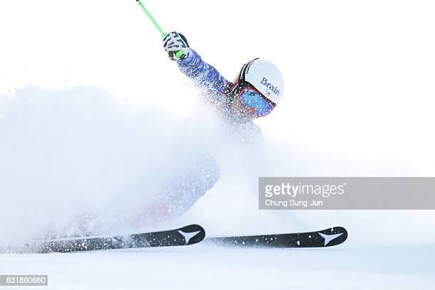 Masanori Shin of Japan competes in the Men's Giant Slalom during the Alpine FEC And President Cup 2017 test event for Pyeongchang 2018 Olympic Winter...