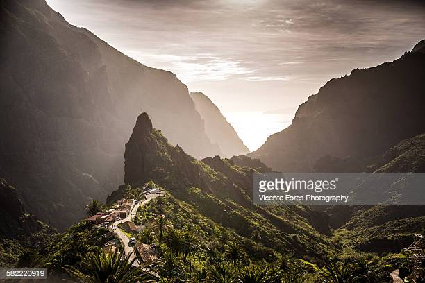masca - forens stock pictures, royalty-free photos & images