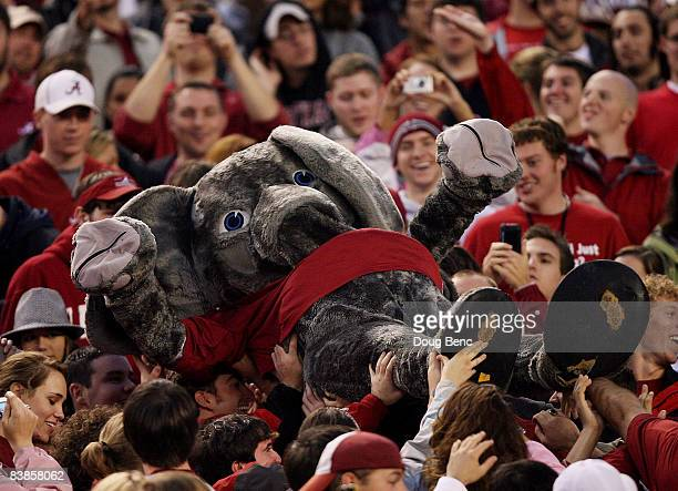 Mascot Big Al of the Alabama Crimson Tide crowd surfs from the field to the upper deck while taking on the Auburn Tigers at BryantDenny Stadium on...