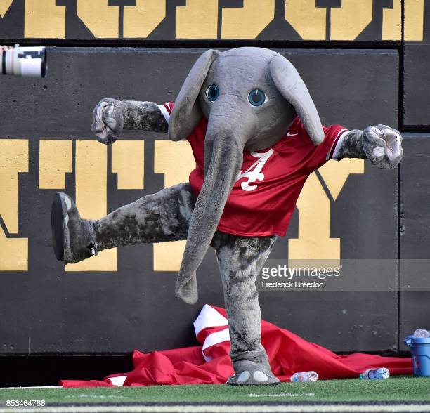Mascot 'Big Al' of the Alabama Crimson Tide watches from the sideline during a game against the Vanderbilt Commodores at Vanderbilt Stadium on...