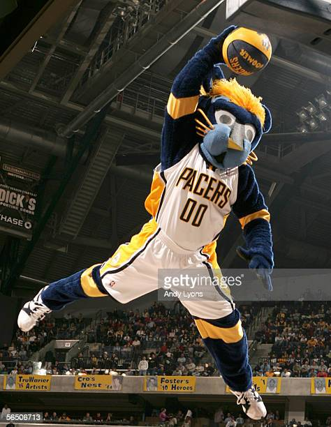 """Mascot """"Boomer"""" of the Indiana Pacers performs during a timeout in the NBA game against the Toronto Raptors on December 30, 2005 at Conseco..."""