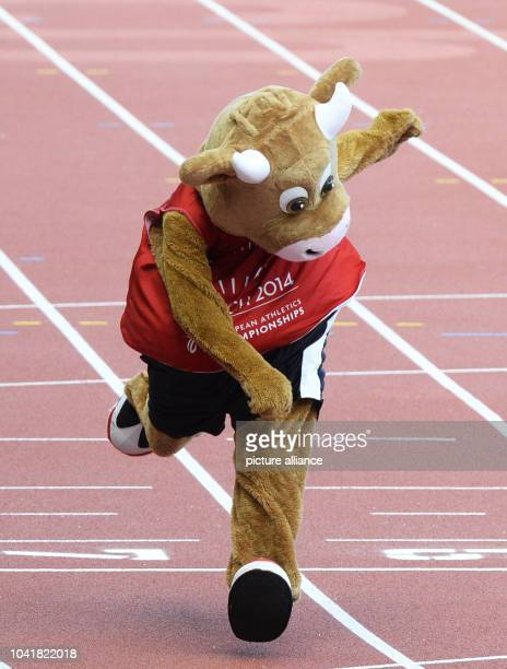 Mascot Cooly performes after the women's 4 x 100 Relay Qualifying at the European Athletics Championships 2014 at the Letzigrund stadium in Zurich...