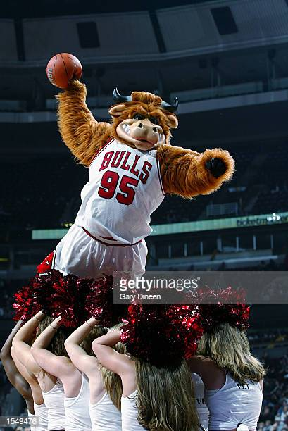 Mascot 'Da Bull' of the of the Chicago Bulls flies over the Bulls' cheerleaders during the preseason game against the Minnesota Timberwolves on...