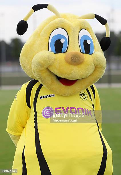 Mascot Emma poses during the Borussia Dortmund team presentation at the BVB trainings center on July 6 2009 in Dortmund Germany