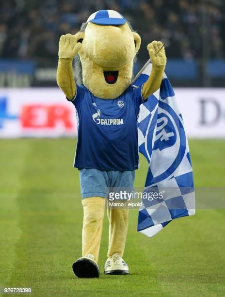 Mascot Erwin of FC Schalke 04 before the first Bundesliga match between Schalke 04 against Hertha BSC at the VeltinsArena on March 3 2018 in...