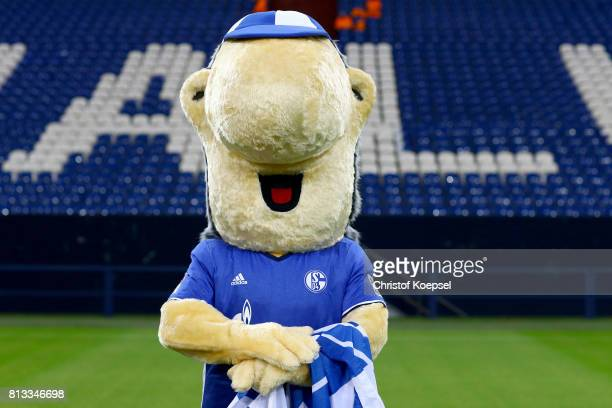 Mascot Erwin of FC Schalke 04 poses during the team presentation at Veltins Arena on July 12 2017 in Gelsenkirchen Germany