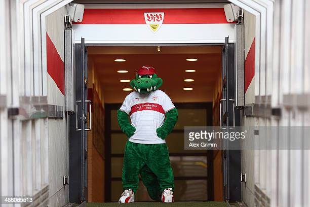 Mascot 'Fritzle' of Stuttgart prepares for the Bundesliga match between VfB Stuttgart and FC Augsburg at MercedesBenz Arena on February 9 2014 in...