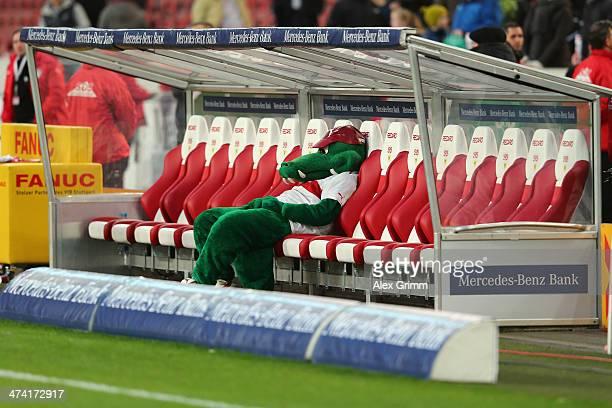 Mascot 'Fritzle' of Stuttgart reacts after the Bundesliga match between VfB Stuttgart and Hertha BSC Berlin at MercedesBenz Arena on February 22 2014...