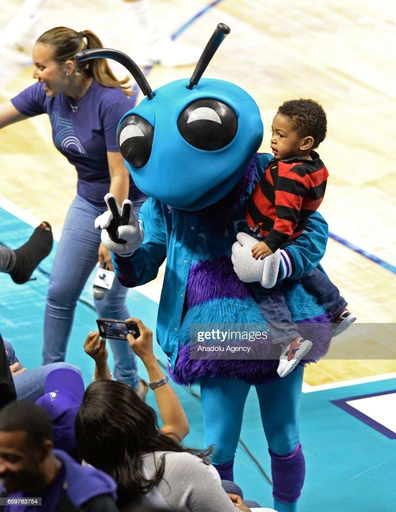 Charlotte hornets new mascot