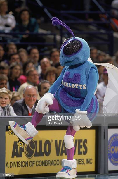 Mascot Hugo the Hornet of the Charlotte Hornets dances on the sideline during an NBA game at Charlotte Colesium in 1989