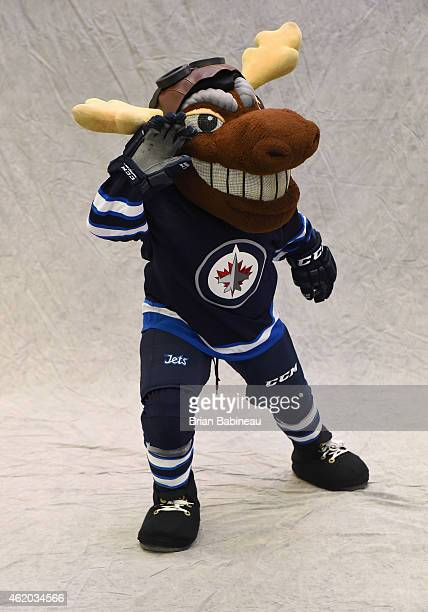 Mascot Mick E Moose of the Winnipeg Jets poses for a portrait during the 2015 NHL AllStar Weekend Mascot Portrait session at Columbus Convention...