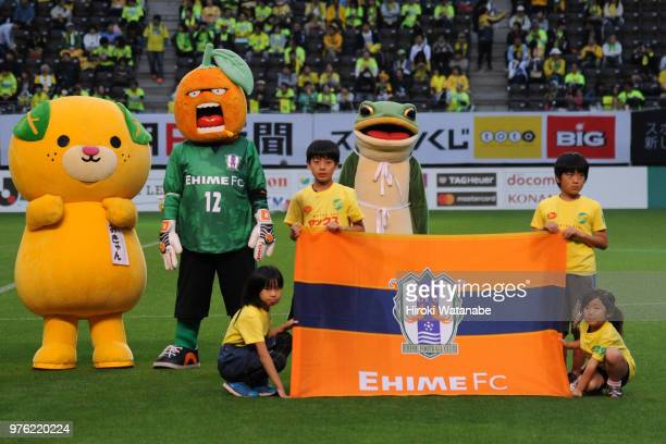 Mascot of Ehime FC looks on prior to the JLeague J2 match between JEF United Chiba and Ehime FC at Fukuda Denshi Arena on June 16 2018 in Chiba Japan...